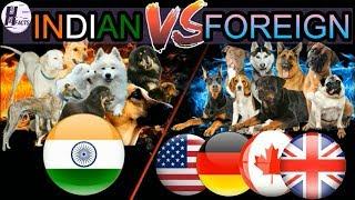 INDIAN Dog Breeds VS FOREIGN Dog Breeds | Hindi | COMPARISON | DOG VS DOG | HINGLISH FACTS