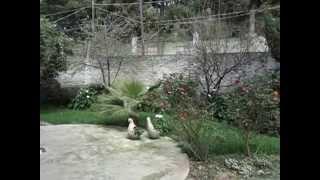 Venta Casa Santa Cecilia, Xochimilco. Distrito Federal.