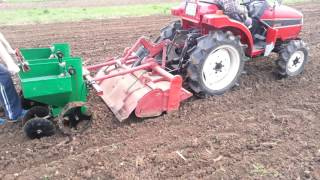 Machine planting potatoes