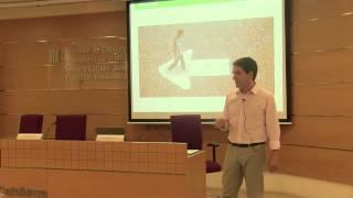 Reflexions al voltant del concepte de la professionalitat. Test d'autoanàlisi. A.Rimbau