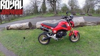 Honda MSX 125 (Grom) Mods & Akrapovic db sound test