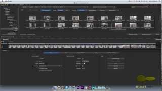Adobe speed grade