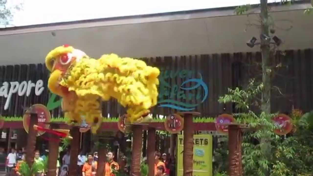 Lion Dancing Pole 2015 Lion Dance High Pole