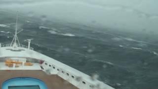 Carnival Cruise X Ray Machine 2017  Punchaoscom