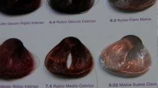 Cooking | Color Chart for Hair Carta de Colores | Color Chart for Hair Carta de Colores