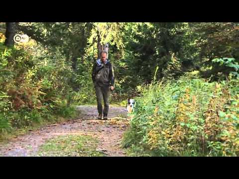 Black Forest - Sustainable Tourism   Discover Germany