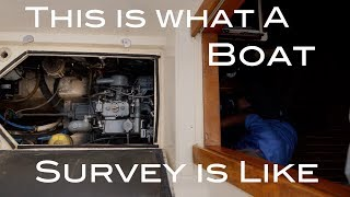 Boat Survey & Sea Trial.. The Process Worth Every Penny! The Boat Life Sailing Adventure travel vlog