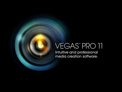 . Sony Vegas Pro  StopGame,  3
