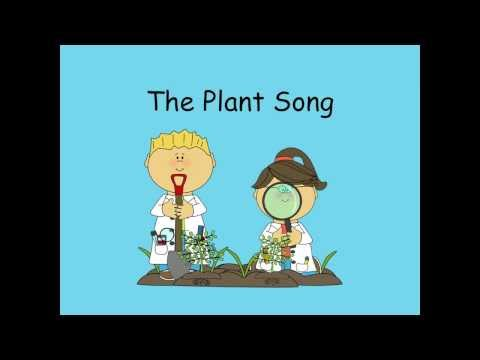 The Plant Song