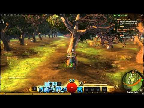 Nvidia Geforce GT 630m Guild Wars 2 Beta