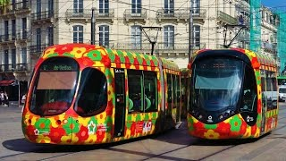 Trams in France : Les Tramways de Montpellier