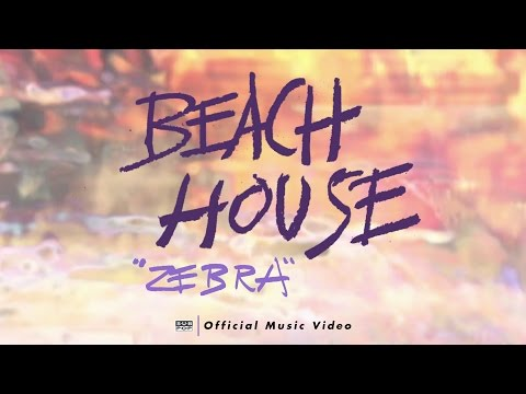Zebra - Beach House