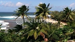 Nature Videos - Piano Music, Paradise, Harmony & Energy - SIMPLY RELAX