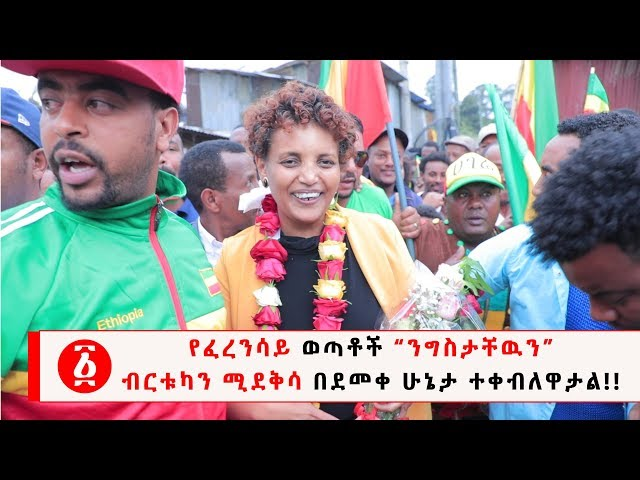 Birtukan Mideksa returned to Ethiopia after seven years in exile