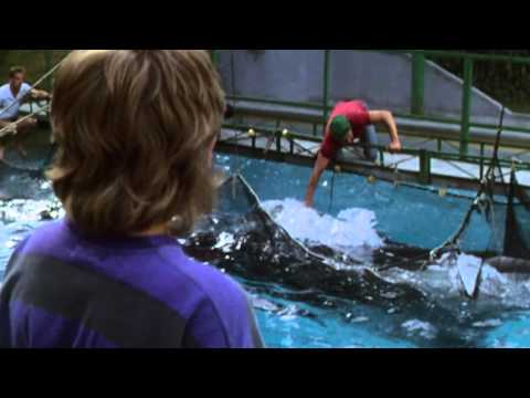 Free Willy is listed (or ranked) 20 on the list The Best Live Action Animal Movies for Kids