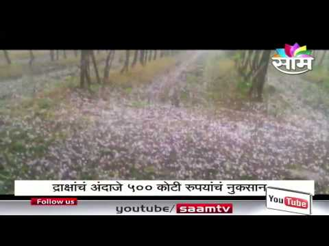 Agrowon Daily Co-Editor Vijay Sukalkar gives account of hailstorm hit damaged crops