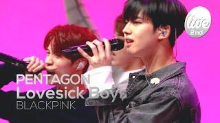 Download lagu 펜타곤(PENTAGON)의 'Lovesick Boys'│블랙핑크(BLACKPINK) 'Lovesick Girls' 커버(콘서트 상사병..) [it's KPOP LIVE 잇츠라이브]