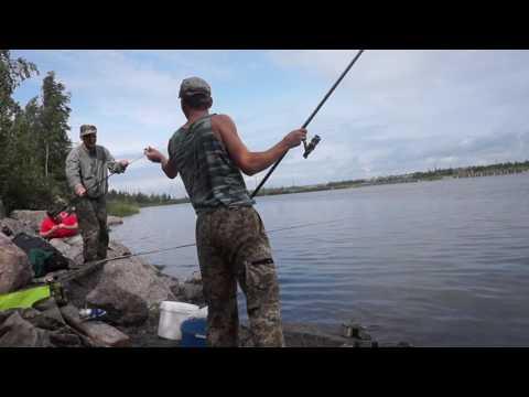 петергоф рыбалка на финском заливе