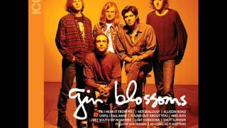 Watch Gin Blossoms Lost Horizons video