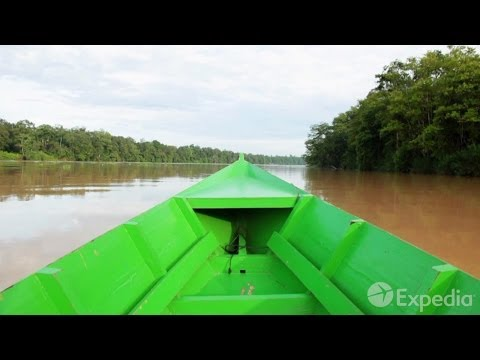 Kinabatangan - City Video Guide