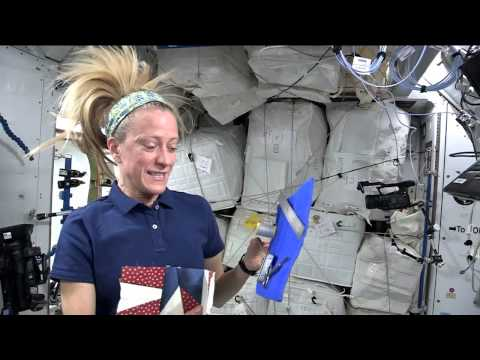 NASA Astronaut Karen Nyberg Invites Quilters to Create a Space Square