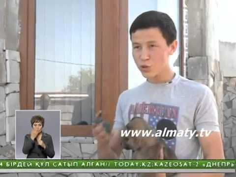 Алматылық үйлерде қасқырлар жүр