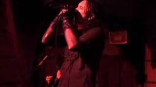 Watch System Syn All The Human Things video