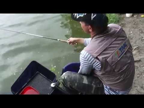 Поплавочная Ловля Уклейки: семейная рыбалка. Мастер-Класс О рыбалке всерьёз видео 189.