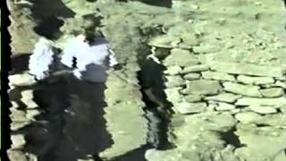 Documentary - Bible - Scientific Proofs God is Real