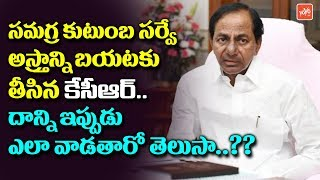 CM KCR Special Focus On Samagra Kutumba Survey | 2019 Elections in Telangana
