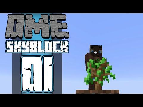Dansk Minecraft :: Sky Factory 2 :: DME TWERKER træer! :: EP01
