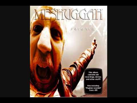 Meshuggah - War