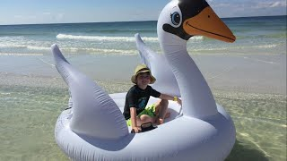 Mom and Son Rescued After Inflatable Swan Floats Out to Sea