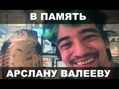 В ПАМЯТЬ АРСЛАНУ ВАЛЕЕВУ!