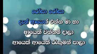 Ai Se Eu Te Pego Sinhala Kareoke DHOL version Rosa