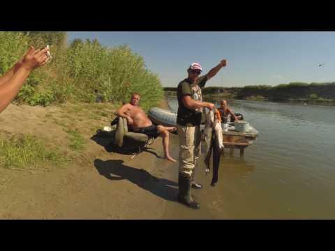 рыбалка на ахтубе-август видео