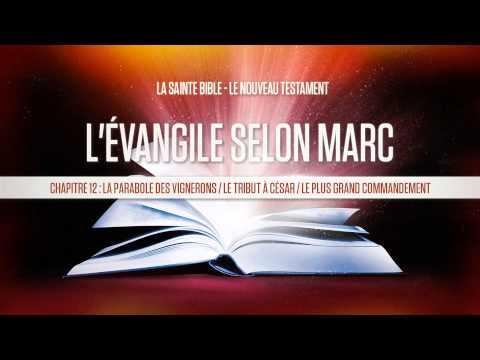 « Chapitre 12 : La parabole des vignerons / Le tribut à César / Le plus grand commandement » Marc
