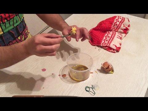 Как сделать домашнего гомункула