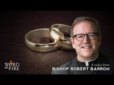 Fr. Barron comments on Marriage and Relationships