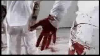Watch Breed 77 Blind video