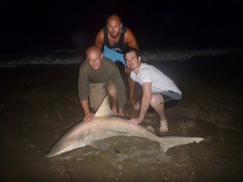 2013 Shark Fishing in Ocean Isle Beach, NC