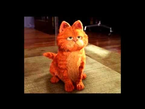 Cancion De La Pelicula De Garfield Garfield Movie Music