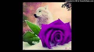 Lobo Blanko - Purple Roses [XXX Tentacion Fuck Love Tribute]