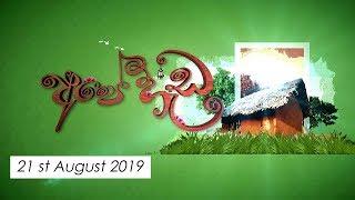 Ape Heda   21st August 2019