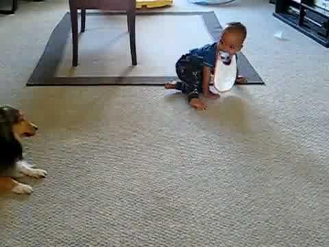 Zum Video von timmy
