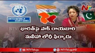 What is India's Strategy to Face Pakistan and China in UNSC ? | Story Board | NTV