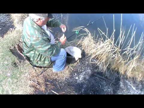 открытие сезона на тереке в кбр рыбалка