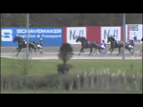 Vidéo de la course PMU PRIX DE STELLINGWERF (ELITE CHALLENGE)