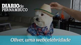 Oliver, uma webcelebridade pernambucana
