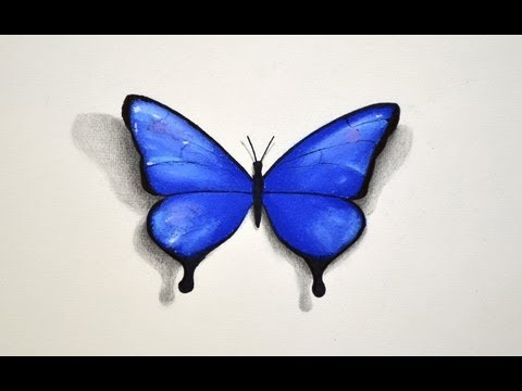 How to Draw a Butterfly With Pastel